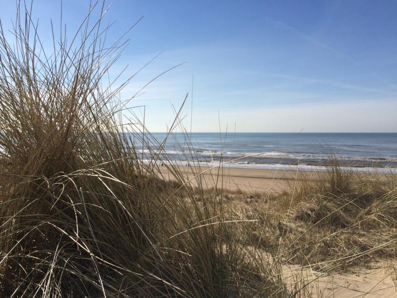 Noordwijk strand & duin