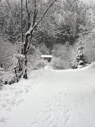 Vakantiehuis in de winter