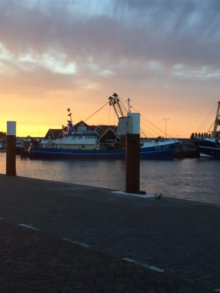 oudeschild (haven)